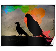 Pigeon Silhoutte Poster