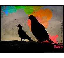Pigeon Silhoutte Photographic Print