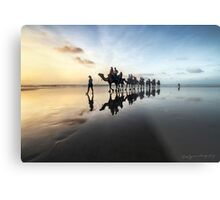 Leading Them Home Metal Print