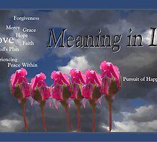 Meaning in Life by Liz Wear