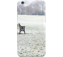 Snow in Park iPhone Case/Skin