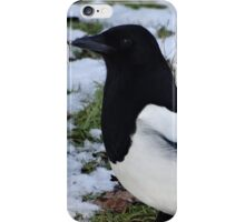 Magpie iPhone Case/Skin