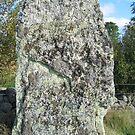 Iron Age Standing Stone by HELUA