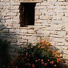 marigold window  by artlorn