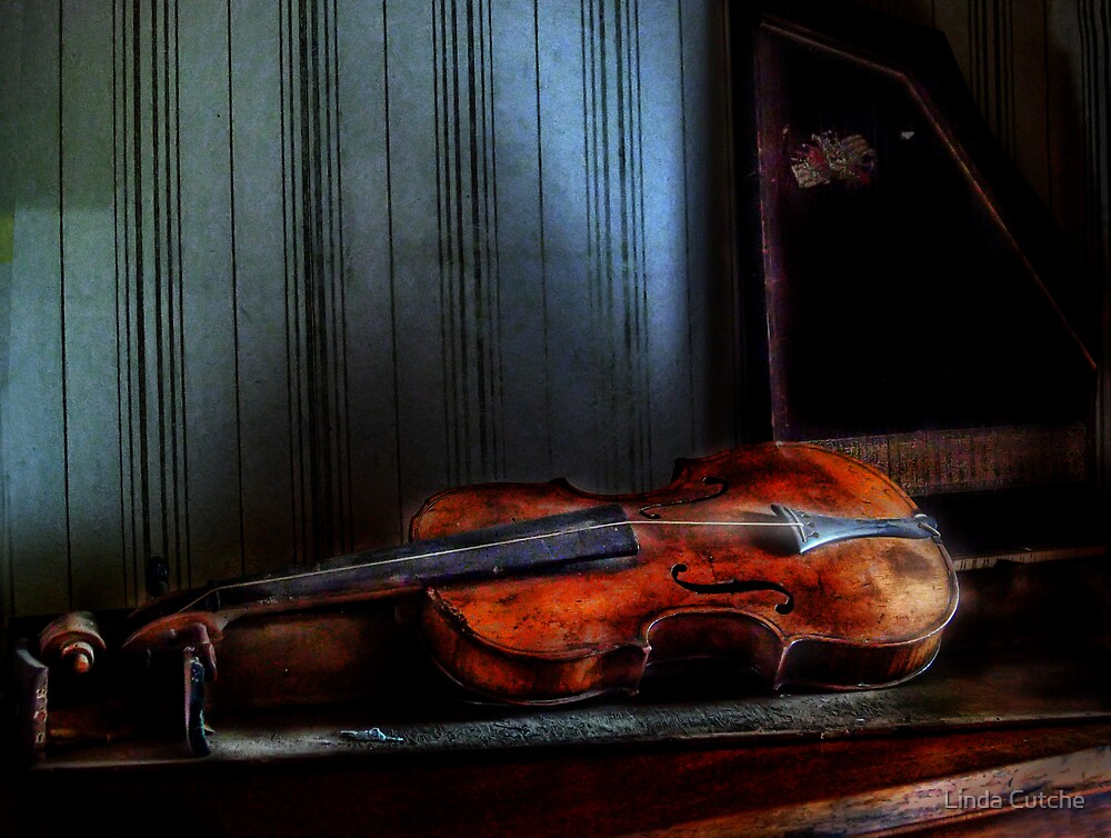 Final Stage For The One String Violin by Linda Cutche