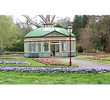 Flowers At The Pavilion Photographic Print