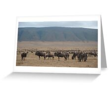 Wildebeast Migration Greeting Card