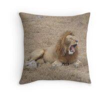 Alpha Male Lion Throw Pillow