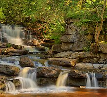 Lower East gill Force  by Stewart Laker