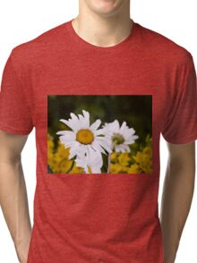 Chamomiles in the garden 2 Tri-blend T-Shirt