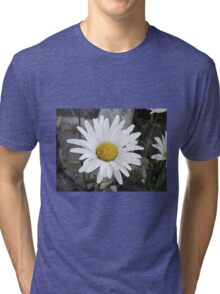 Chamomiles in the garden 4 Tri-blend T-Shirt