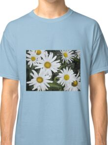 Chamomiles in the garden 6 Classic T-Shirt