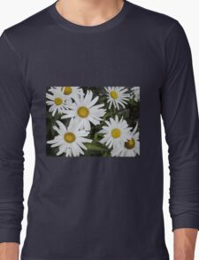 Chamomiles in the garden 6 Long Sleeve T-Shirt