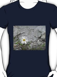 Chamomiles in the garden 7 T-Shirt