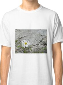 Chamomiles in the garden 7 Classic T-Shirt