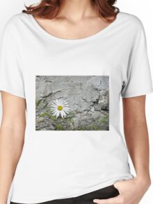 Chamomiles in the garden 7 Women's Relaxed Fit T-Shirt