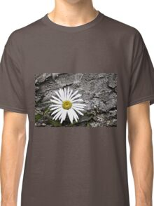 Chamomiles in the garden 8 Classic T-Shirt