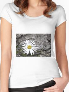 Chamomiles in the garden 8 Women's Fitted Scoop T-Shirt