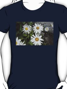 Chamomiles in the garden 9 T-Shirt