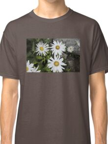 Chamomiles in the garden 9 Classic T-Shirt