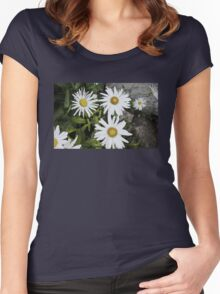 Chamomiles in the garden 9 Women's Fitted Scoop T-Shirt