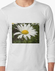 Chamomiles in the garden 11 Long Sleeve T-Shirt