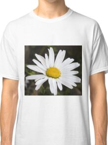 Chamomiles in the garden 12 Classic T-Shirt