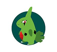 Larvitar - 2nd Gen Photographic Print