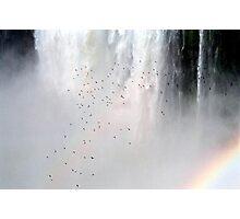 Iguassu Falls  Photographic Print