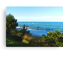 A view to the sea Canvas Print