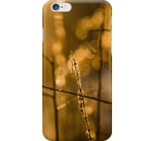 Warm Winter Light iPhone Case/Skin