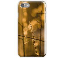 Warm Winter Light iPhone Case/Skin