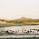 Criccieth by Louise Green