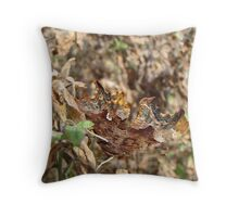 Look and you will SEE Throw Pillow