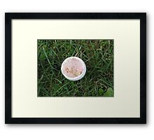 Hatched bird egg Framed Print