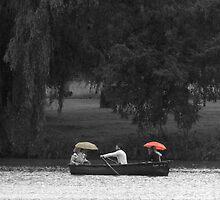 its raining! by Di Dowsett