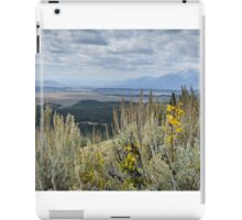 Signal Mountain In Grand Teton Np iPad Case/Skin