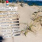 Welcome to Manasquan by Dorothy DuMond Cohen