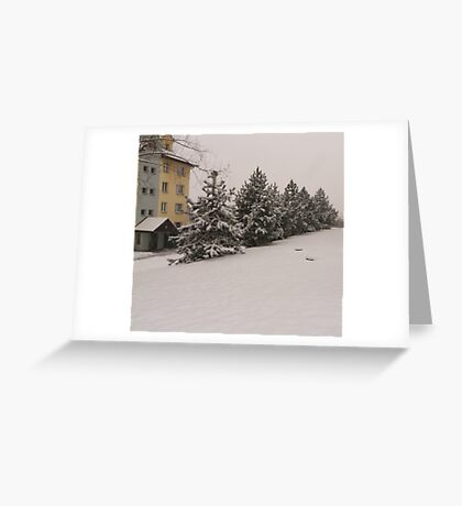 snowy green with the blocks of flats Greeting Card