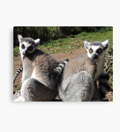 Two-Riffic  Canvas Print