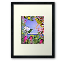 Yellow-napped Amazon Framed Print