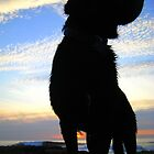 Proud Silhouette and Sky by Honor Kyne