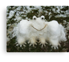 A SNOWFROG FOR YOU  Canvas Print