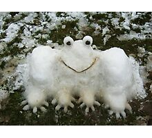 A SNOWFROG FOR YOU  Photographic Print