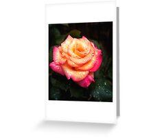 Seattle Rose Greeting Card
