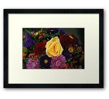 Yelllow Rose  Framed Print
