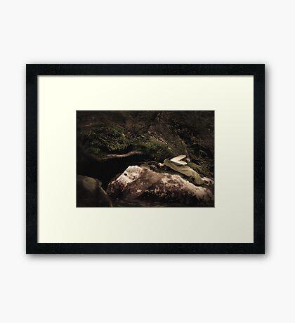 Sleeping Fairy Framed Print