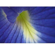 Blue Sea Photographic Print