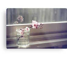 windowsill. first sign of spring. Metal Print