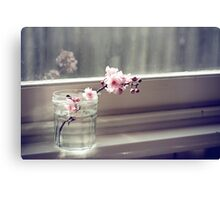 windowsill. first sign of spring. Canvas Print